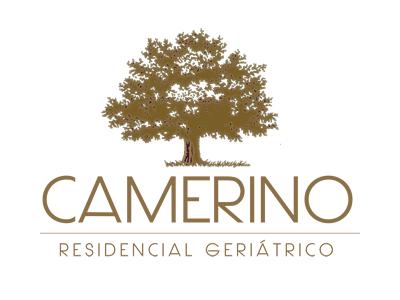 Criação de Sites do cliente Camerino Instituição de Longa Permanência Ltda - Me.